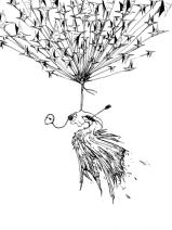 白鴿-伍佰, 2000