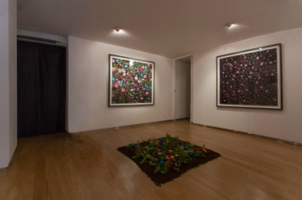 Installation View, Floral Fabric (Image Courtesy of Eason Tsang)