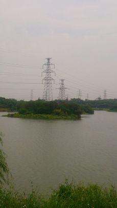 荔灣濕地公園